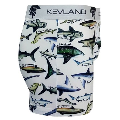 Cueca Boxer Kevland Breeds Of Sharks