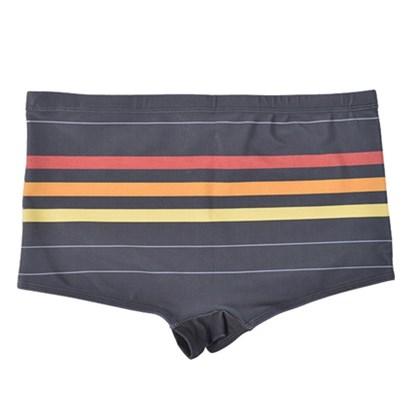 Sunga Extra Grande Rip Curl Stripes Summer Black